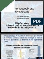 neurofisio-131113170953-phpapp02