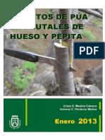 Injerto de Puas en Frutales de Hueso y Pepita - 2013 Frut_479