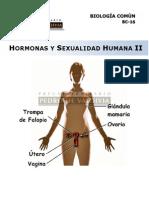 14 Hormonas y Sexualidad II