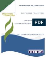 Carga Eléctrica y Leyes Electromagneticas de Simetria