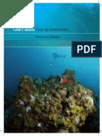 Gran Canaria Guia Inmersiones