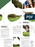 BrochureReMedia