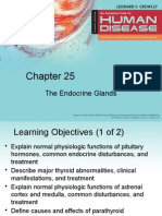 The_Endocrine_Glands (1).pptx