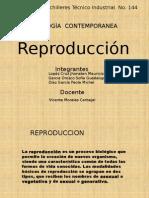 Tema . REPRODUCCIÓN HUMANA
