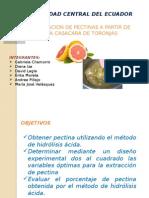 Elaboracion de pectina