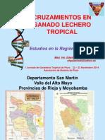 CRUZAMIENTOS EN GANADO LECHERO TROPICAL2.pdf
