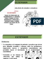 Definicion Extension