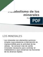 Metabolismo de Los Minerales