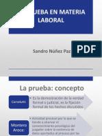 La Prueba - Sandro Nuñez