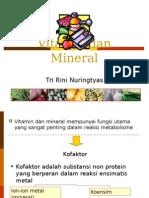 Vitamin dan Mineral.ppt