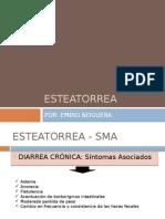 ESTEATORREA