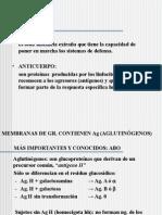 Grupo Sanguineneo