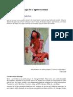 Egana Lucia Mi-nuestra-genealogia de La Agresion Sexual Pikara-2014