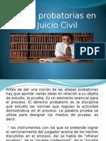 Presentacion de Etapas Probatorias (2)