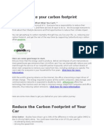 carbon footprints.docx