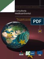 Consultoria medioambiental.pdf
