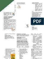 tripticodelagripeestacional-150203080414-conversion-gate01+(1)