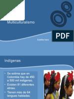 multiculturalismoexpo-101110115742-phpapp02
