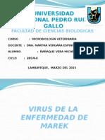 Virus de La Enfermedad de Marek (1)
