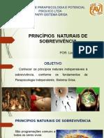 princ´pios naturais de sobrevivencia slides para microaula.pptx