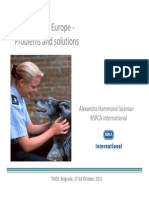 Stray Dogs in Europe - Problems and Solutions - AHS | Animal