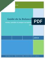 Vérification, contrôle et  analyse de la balance.pdf