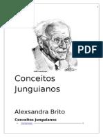 Conceitos Junguianos.docx
