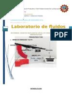 INFORME-FLUIDOS-2