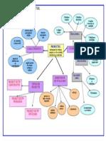 harta conceptuala proiectul