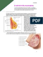 420 2014-02-27 Patologia Mamaria