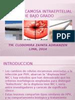 LESION DE BAJO GRADO.pptx