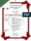 MONOGRAFIA_cathia anampa.docx