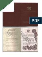 Pasaporte Antiguo