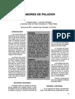 Carcinoma Paladar