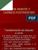 Rigor Mortis y Cambios Postmortem