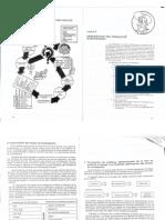 Organización Del Trabajo de Investigación