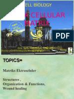 Kuliah Biosel ECM