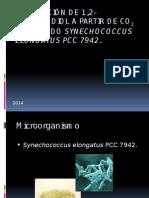 PRODUCCIÓN DE 1,2-PROPANODIOL A PARTIR DE CO2 EMPLEANDO Synechococcus elongatus PCC 7942.