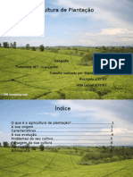 Rosangela, Leonel e maida- agricultura de plantação