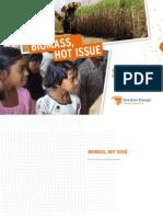 Biomass_hot_issue.pdf