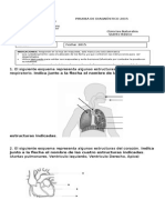 diagnostico 5