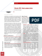 UPV Fisiopatología Guía 03 - Inflamación