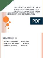 PCR Ganda Untuk Mendeteksi Chlamydia Trachomatis Dan