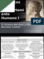 Factores Biológicos Del Comportamiento Humano I