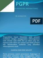 PGPR DAN PERANANNYA.pdf