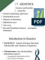 Genetics Lecture