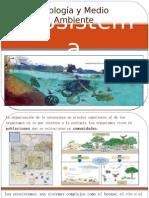 Ecosistem A