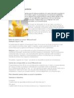 Dietele Cu Sucuri Si Proteine