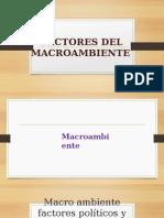 Factores Del Macroambiente