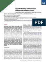 Plasmodium motility
